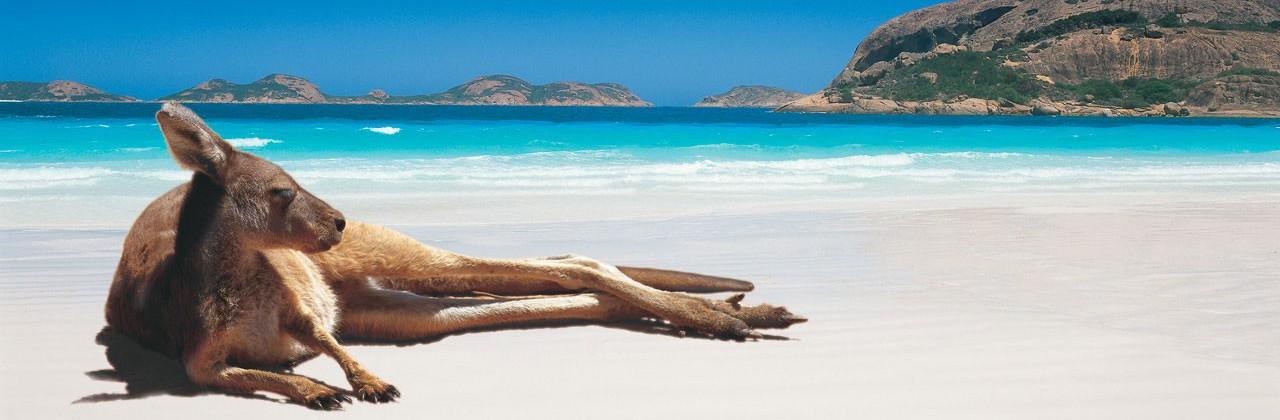 Doudtrip – Australie